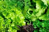 stockvault-greens169575sm