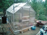 I even bought a greenhouse in an experiment to see if I could grow veggies and tropical plants in a mountain climate. Some plants lived.